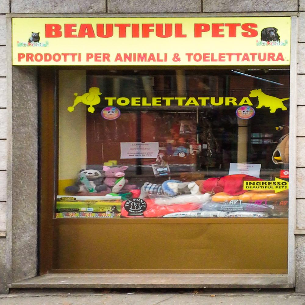 Beautiful Pets